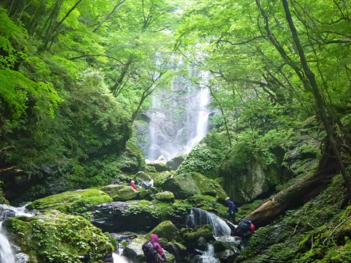 盛りだくさん過ぎる体験山行: 蓮川唐谷