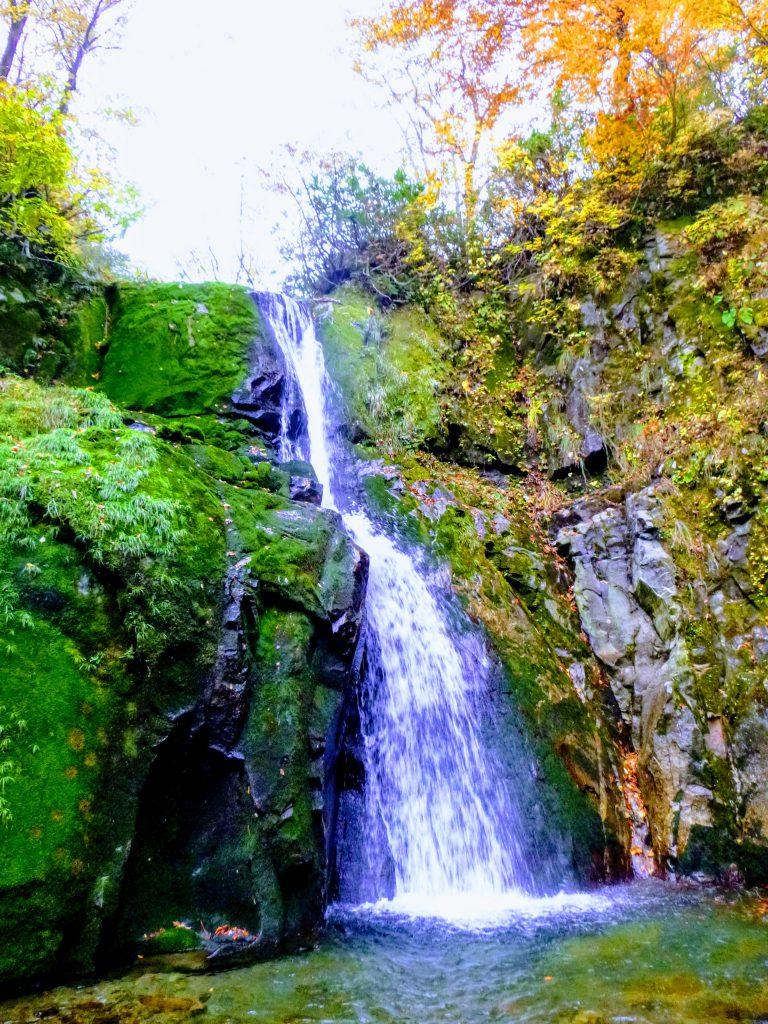 ブナ小屋谷左又の滝 標高約1360m, 13mF, 右岸巻き降りで苦労した。左岸巻き降りがオススメ。