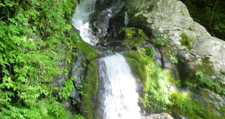 武田尾温泉の奥の谷